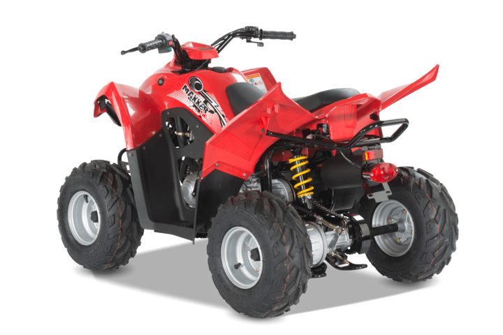 50ccm quad kymco maxxer 50 kinderquad. Black Bedroom Furniture Sets. Home Design Ideas